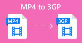 MP4 to 3GP