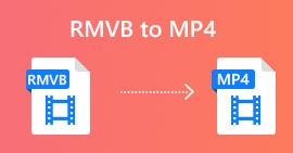 RMVB to MP4