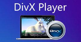 DivX 플레이어