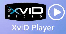 Xvid 플레이어